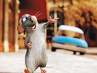 学习老鼠的生存智慧——中小企业基业长青之道